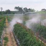Pesticidi_1200x460_30