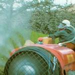 Pesticidi_316x180_11
