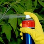 Pesticidi_316x180_6