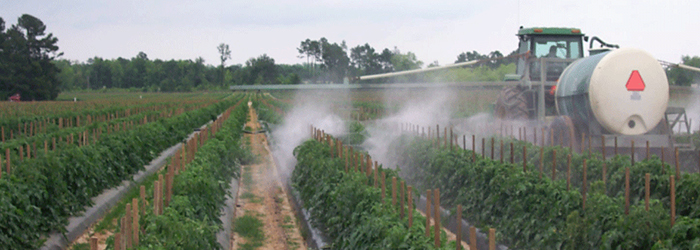 Pesticidi_700x250_30